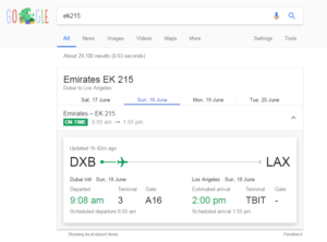 Google flight status