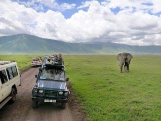 Read Scoops Tanzania