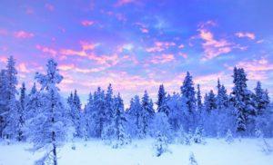 Read Scoops Lapland