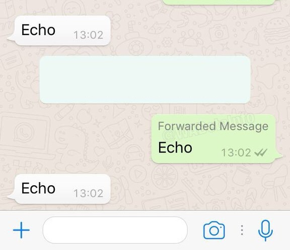 whatsapp introduces forwarded message read scoops